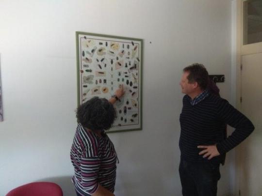 Encuentro con Mercedes Fernández, profesora de entomología de la Universidad de Valladolid en Palencia  .