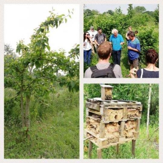 Visita a un bosque comestible en Bélgica