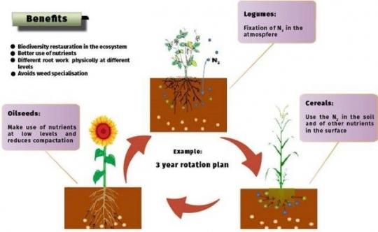 Reunión con la Subdirección General de Cultivos Herbáceos e Industriales y Aceite de Oliva del MAPA
