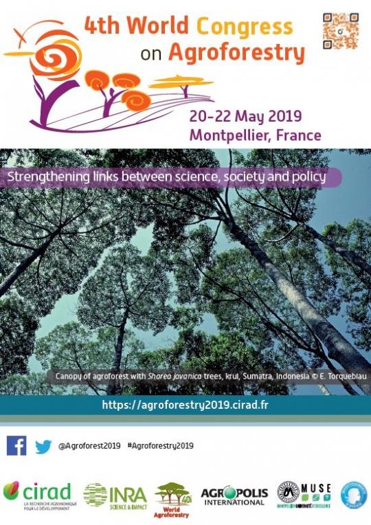 Las actividades de investigación dentro del Proyecto LIFE-Regenerate en el IV Congreso Mundial sobre Agroforestería