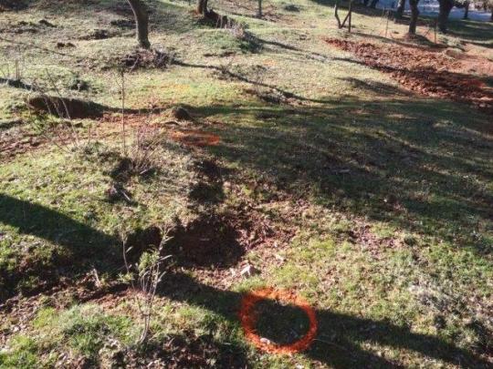 ID Forest e IRNASA señalizan y ejecutan pozos truferos.