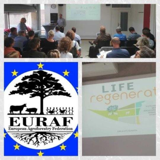 Presentación del proyecto en la conferencia EURAF en Nijmegen